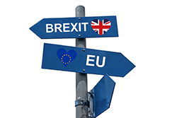 Tax transition laws concerning a hard Brexit
