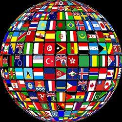Geef uw wereldinkomen op